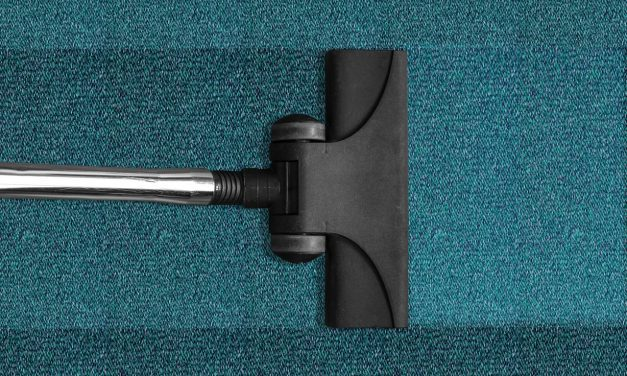 Non-toxic Carpet Cleaner