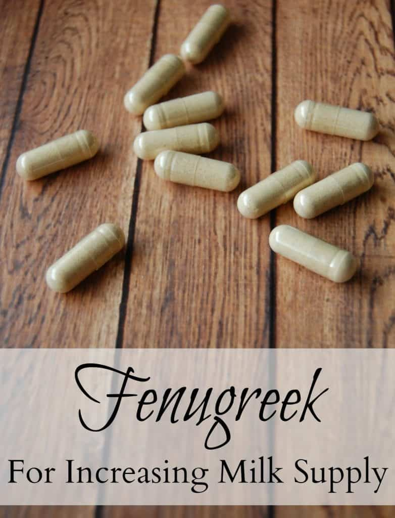 Learn how to increase milk supply with fenugreek! - Fenugreek is an herb that has been recommended for increasing milk supply for centuries. Many women will double their supply with fenugreek. Fenugreek isn't some random herb either; we actually use it quite often in cooking. It can be found in many curries, chutneys, Five Spice mixtures, and even in artificial maple syrup. #fenugreek #milksupply #breastfeeding #lowmilksupply #increasemilksupply