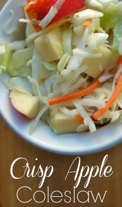 Crisp Apple Coleslaw - This recipe is such a simple one. It requires few ingredients and they are all healthy so you can feel great about eating this coleslaw! Juicy apples, hints of celery seed, and crisp cabbage… lovely. #coleslaw #apple #salad #sidedish #healthyfood #sugarfree