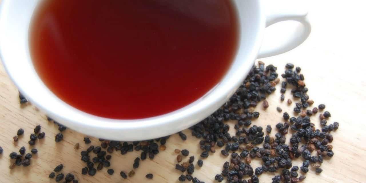 Reusing Elderberries to Make Elderberry Tea