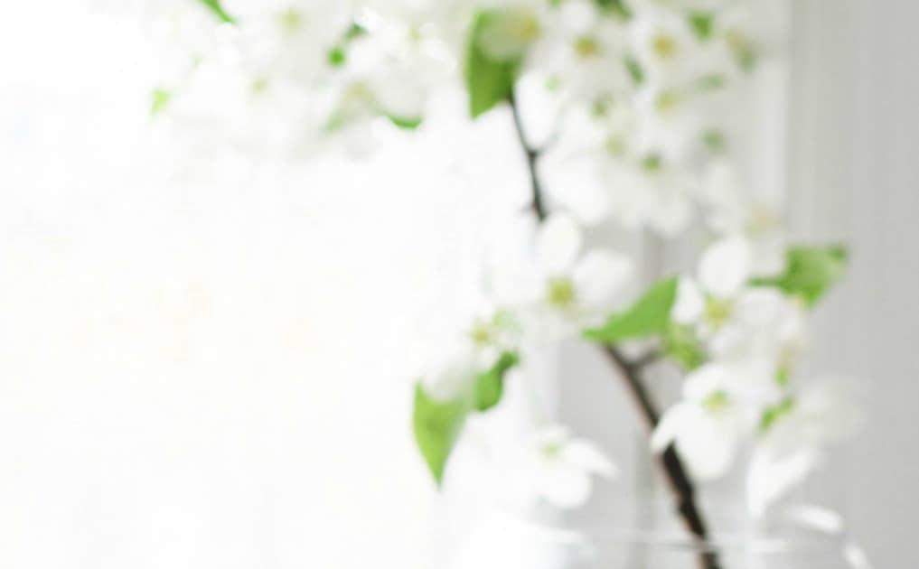 Environmental sensitivities with eczema