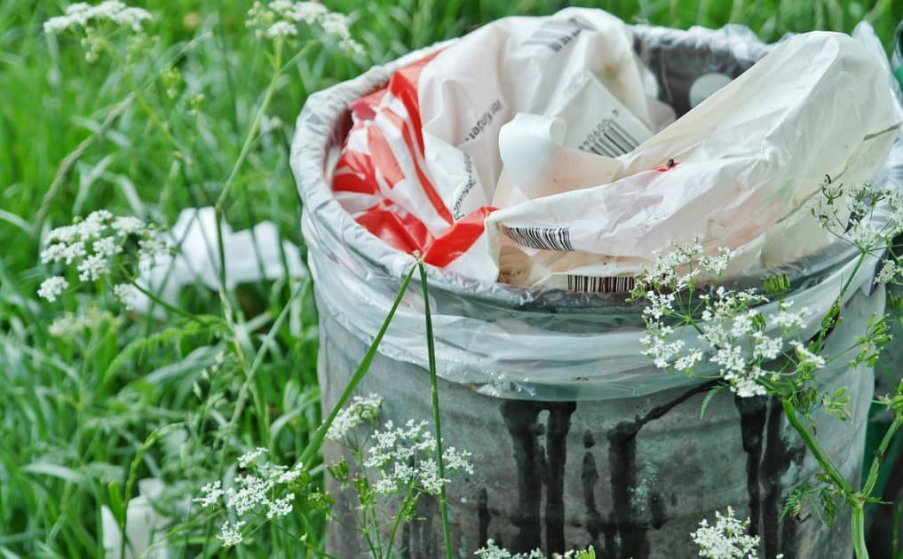 15 Ways to Reduce Your Waste