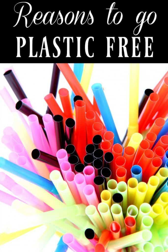 Reasons to go Plastic Free