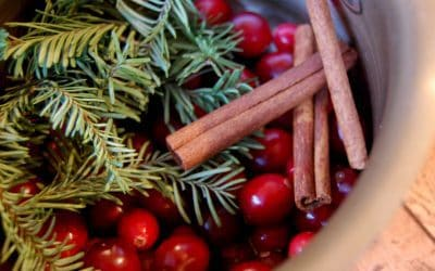 Home for the Holidays Simmering Potpourri