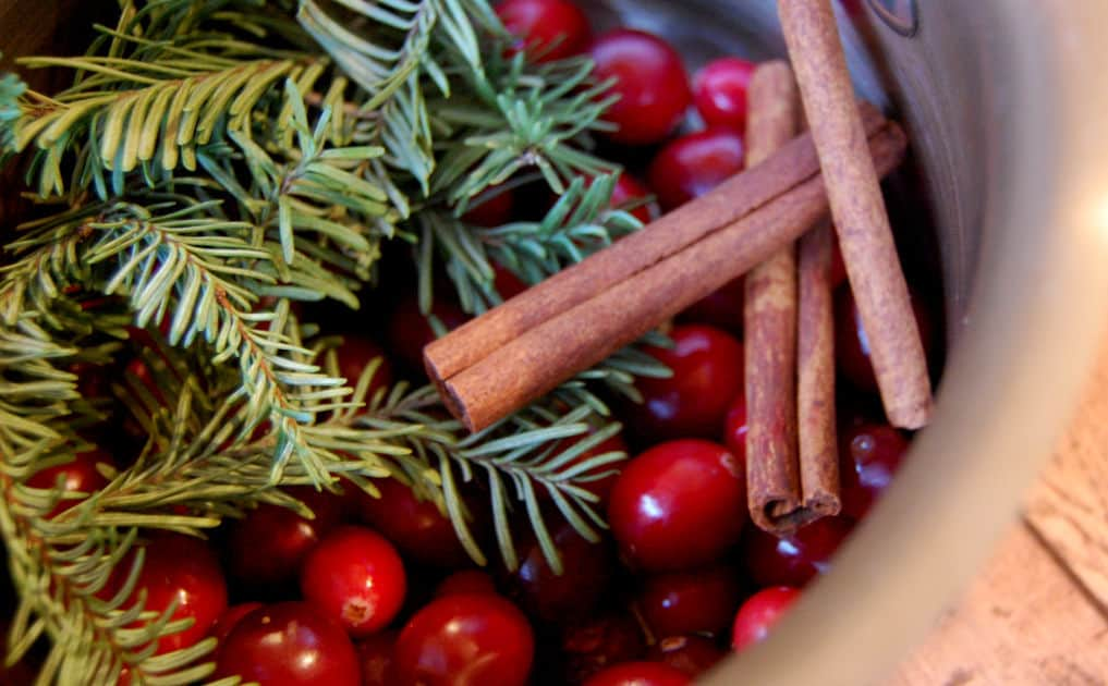 simmering holiday potpourri
