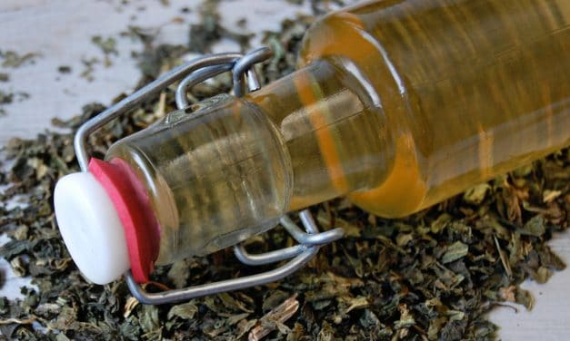 Strengthening Nettle Vinegar Hair Rinse