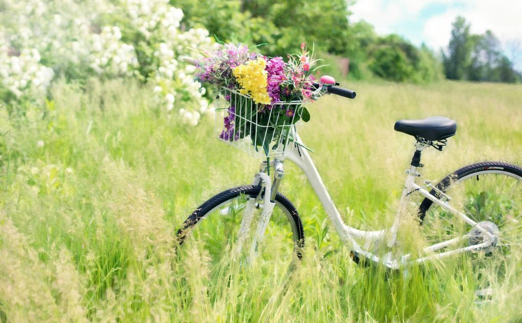 What's the Best Way to Get From A to B? – Sustainable Transport