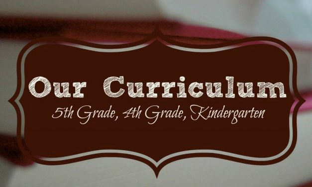 Homeschool Curriculum 2016-2017