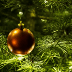 Herbal Ways to Reuse Your Christmas Tree