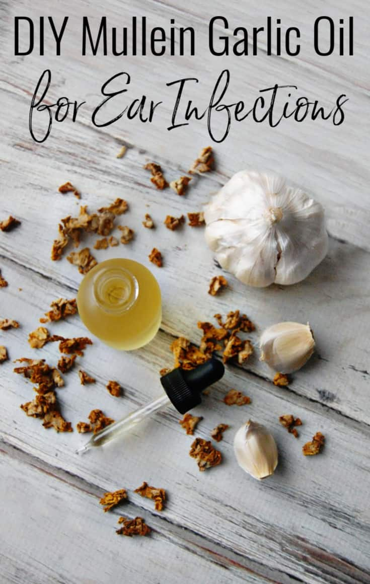 DIY Mullein Garlic Oil for Ear Infections